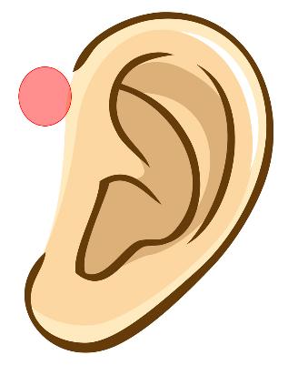 痛い 耳たぶ 押す と
